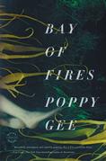 Bay of Fires: A Novel