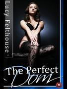 The Perfect Dom: Four short BDSM erotic stories