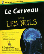 Le Cerveau Pour les Nuls