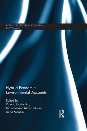 Hybrid Economic-Environmental Accounts
