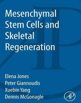 Mesenchymal Stem Cells and Skeletal Regeneration