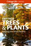 Cottage Trees & Plants