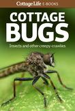 Cottage Bugs