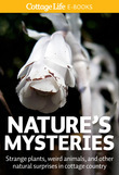 Nature's Mysteries