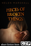 Pieces of Broken Things