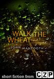 Walk the Wheat