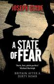 A State of Fear: A Novel