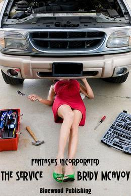 Fantasies Incorporated - The Service