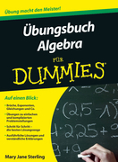 &Uuml;bungsbuch Algebra f&uuml;r Dummies