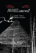 Awake (Are We)? Part 2 the Rebirth of Sublin