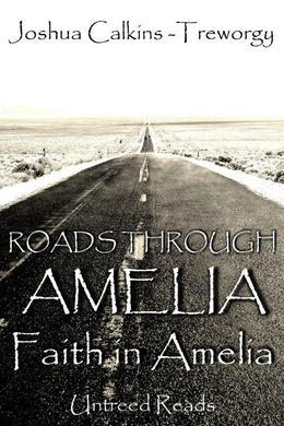 Roads Through Amelia: Faith in Amelia