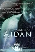 The Awakening: Aidan