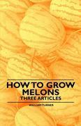 How to Grow Melons - Three Articles