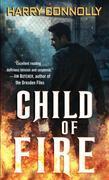 Child of Fire: A Twenty Palaces Novel