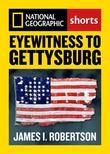 Eyewitness to Gettysburg
