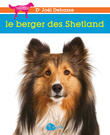 Berger des Shetland