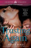 Trusting Again: Book 4 in the Second Chances series
