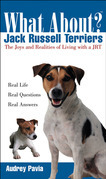 What About Jack Russell Terriers: The Joys and Realities of Living with a JRT