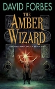 The Amber Wizard