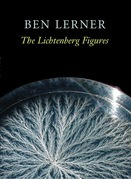 The Lichtenberg Figures