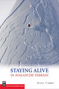 Staying Alive In Avalanche 2E-ebook