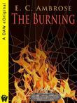 The Burning: A Tale of The Dark Apostle