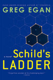 Schild's Ladder