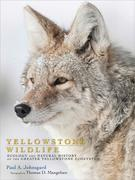 Yellowstone Wildlife: Ecology and Natural History of the Greater Yellowstone Ecosystem