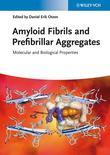 Amyloid Fibrils and Prefibrillar Aggregates: Molecular and Biological Properties