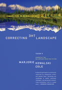 Correcting the Landscape
