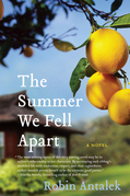 The Summer We Fell Apart: A Novel