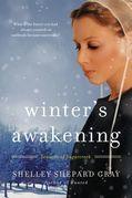 Winter's Awakening: Seasons of Sugarcreek, Book One