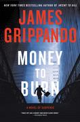 Money to Burn: A Novel of Suspense