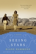 Seeing Stars: A Novel