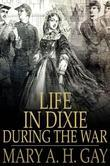 Life in Dixie During the War