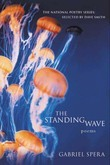 The Standing Wave