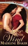 Madeline Baker - Love in the Wind