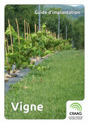 Guide d'implantation - Vigne