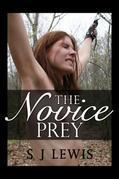 The Novice Prey
