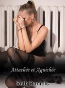 Attachée et Aguichée: une fantaisie lesbienne BDSM