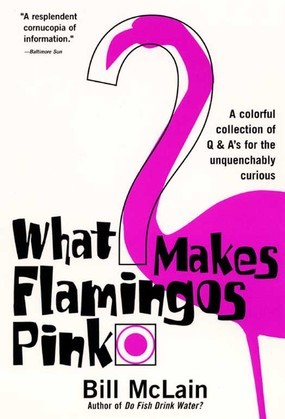 What Makes Flamingos Pink?