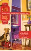 Sink Trap