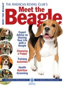 Meet the Beagle