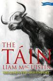 The Táin: Ireland's Epic Adventure