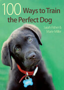 100 Ways To Train A Perfect Dog