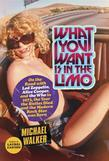 What You Want Is in the Limo: On the Road with Led Zeppelin, Alice Cooper, and the Who in 1973, the Year the Sixties Died and the Modern Rock Star W
