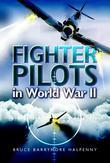 Fighter Pilots in World War Ii: True Stories of Frontline Air Combat
