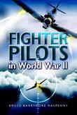 Fighter Pilots in World War Ii: True Stories of Frontline Air Combat