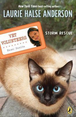 Storm Rescue #6