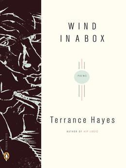 Wind in a Box